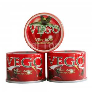 Canned tomato paste 70g(2)