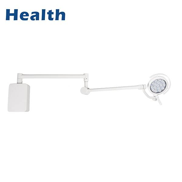 Top Quality Ceiling Led Shadowless Light - LEDB200 LED Wall Mounted Type Medical Examination Light for Veterinary Clinics – Wanyu