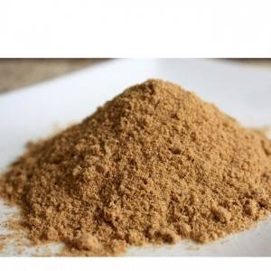 High definition Echinacea Herb Extract Powder - Cordyceps powder – HEX