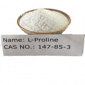 L-Proline CAS NO 147-85-3 for Food Grade (AJI/USP)