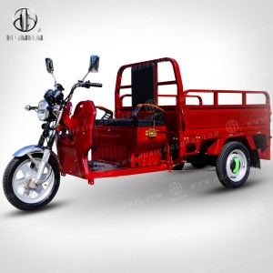 2020 High quality Electric Tricycles Three Wheel - Electric Cargo Carrier JG – Zongshen