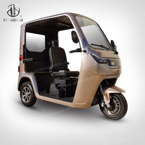 Factory wholesale 3 Wheeled Bicycle - Electric Passenger Tricycles YJ – Zongshen