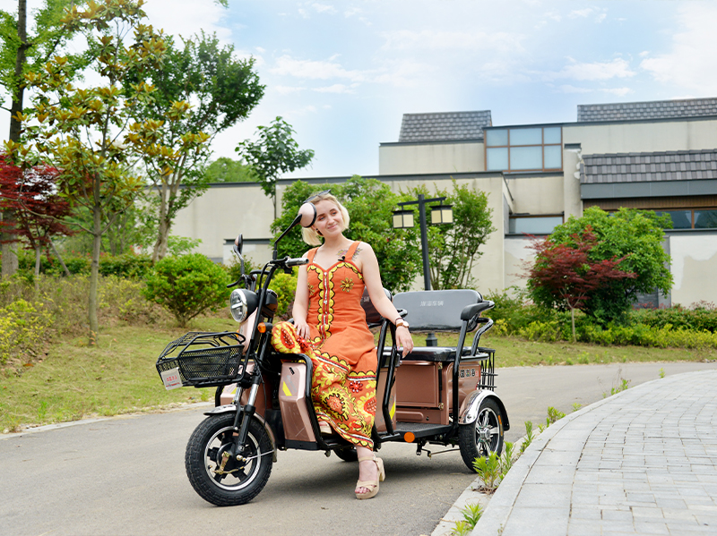 Europe – EEC Leisure tricycle