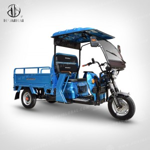 Reasonable price for Mid Drive Electric Trike - Electric Cargo Carrier H21 – Zongshen