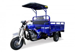 Gasoline Cargo Tricycle Q8