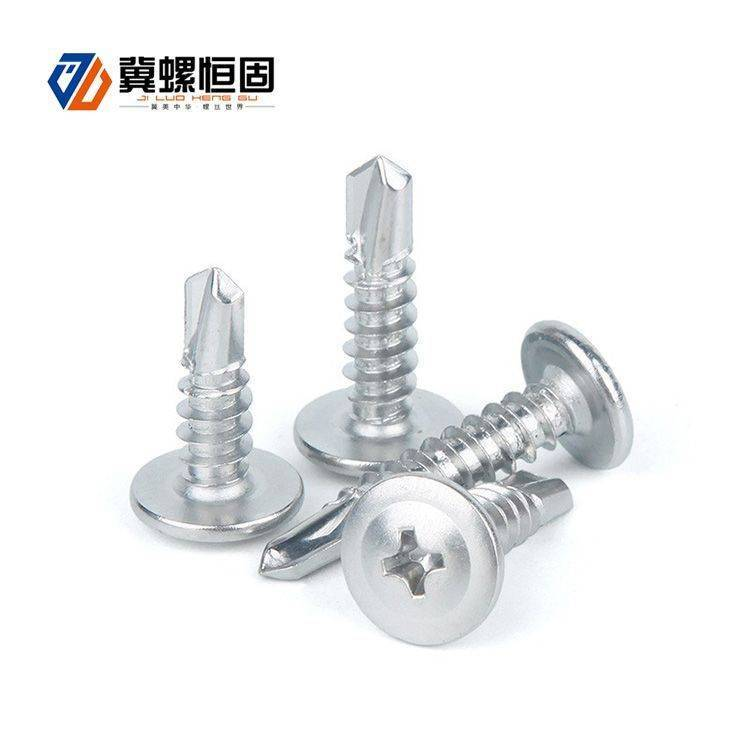 2020 Good Quality Hex Head Self Drilling Screw - Large flat round head drill screw – SCM