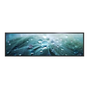 Hot Selling for Smart Board Touch Screen - LYNDIAN 24.5 inch Stretched LCD Display  – Lindian