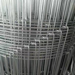 Economical Friendly Hot Dipped Galvanised Field Wire Fence For Grassland