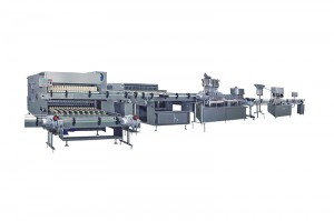 Competitive Price for Ampoule Sealing Machine - Glass Bottle IV Solution Production Line  – IVEN