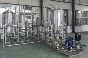 Hot-selling Glucose Syrup Production Line - Pharmaceutical RO Water Treatment system – IVEN