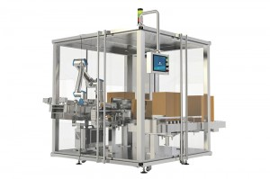 Pharmaceutical and Medical Secondary Packing Solutions