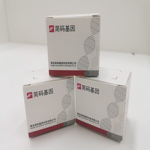 OEM/ODM Factory Staphylococcus Aureus Nucleic Acid Detection Kit - Influenza A/ B virus – jianma