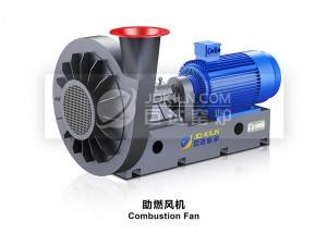 Combustion Fan