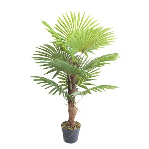 New Arrival  Plastic Palm Plants Factory For Indoor Decoration