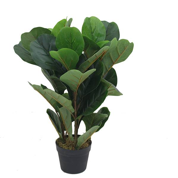 artificial fiddle fig leaft tree for Amazon hot sale plastic fiddle tree with natural wood trunk real touch leaves for decor Featured Image