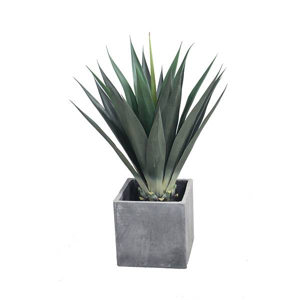 artificial yucca plants new design hot selling Featured Image