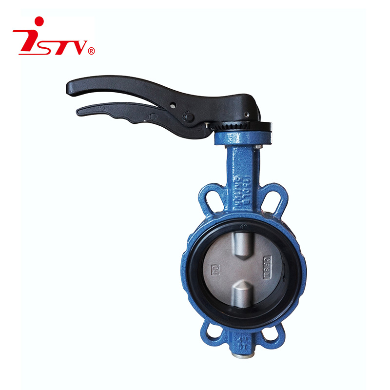 Bi-axial center lined type rubber butterfly valve