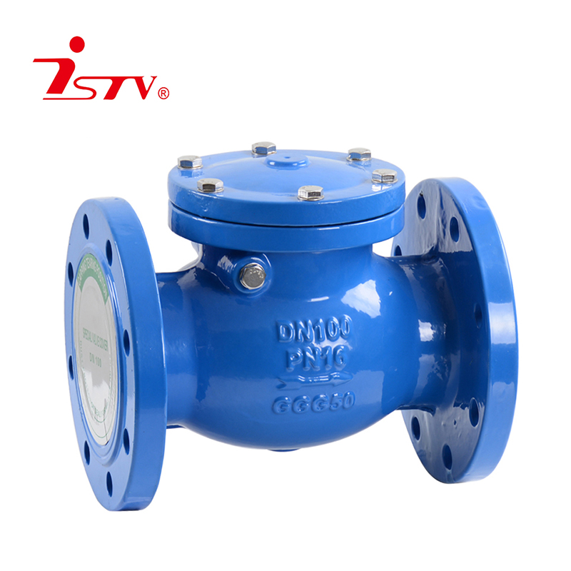 BS5153 swing check valve