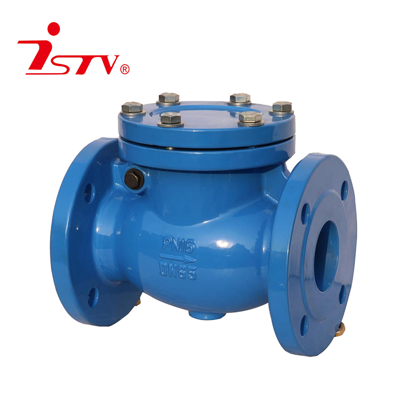 DIN3202 -F6 swing check valve Featured Image