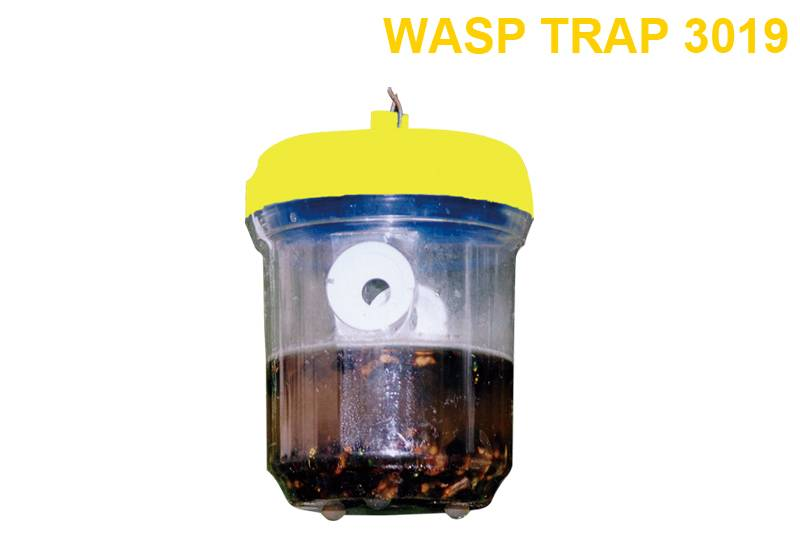 Super Purchasing for Fly Zapper Light Bulb - Wasp Trap 3019 – Jinglong