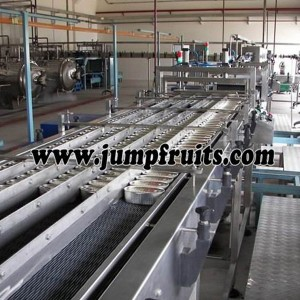Canned fish equipment