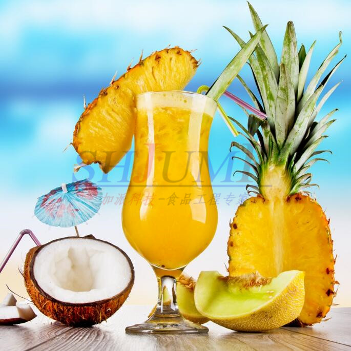 Industrial pineapple cold pressed juicer extractor machine