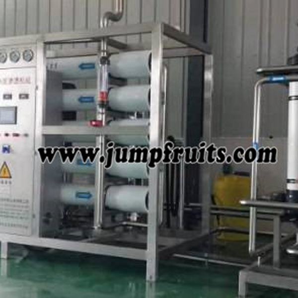 Factory Cheap Mulberry Juice Equipment - Pure water prodution machine – JUMP detail pictures