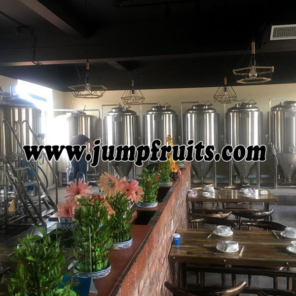 High Performance Canned Pineapples Production Line - Self brewed fresh beer equipment – JUMP