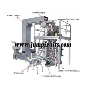 Factory making Canned Green Beans Equipment - Soft candy machine – JUMP