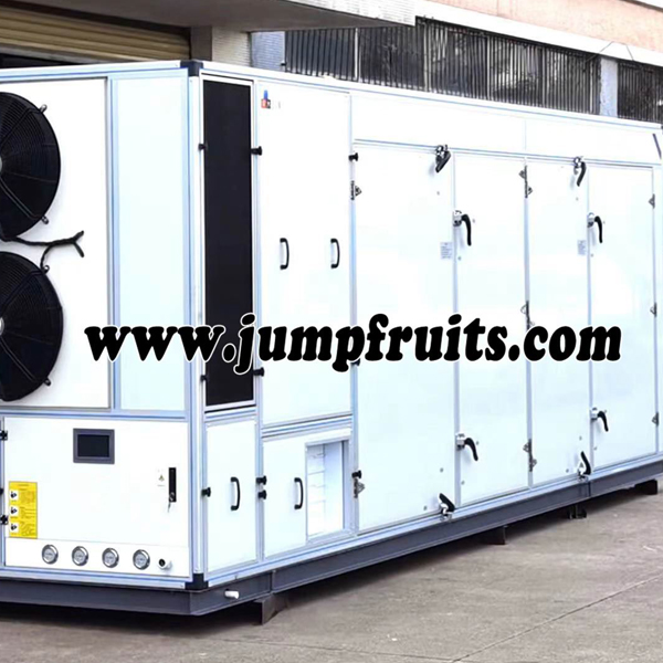 Wholesale Dealers of Kitchen Equipment - Fruits and vegetables drying and packing whole line – JUMP