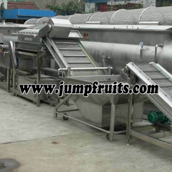 Top Quality Plastic Bag Tomato Sauce Equipment - Blueberry, blackberry, mulberry, strawberry, raspberry, red bayberry, cranberry processing machine and production line – JUMP