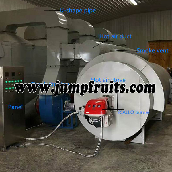 Best-Selling Dried Onion Equipment - Fruits and vegetables drying and packing whole line – JUMP