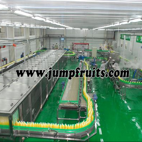 China wholesale Mulberry Jam Machine - Beverage equipment and production line – JUMP