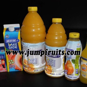 Competitive Price for 70-4500g Tin Can Tomato Sauce Production Line - Mango, pineapple, papaya, guava processing machine and production line – JUMP