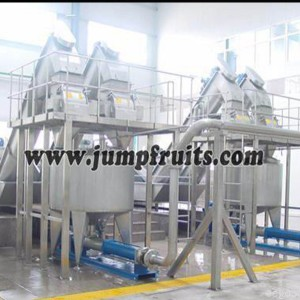 Mango, pineapple, papaya, guava processing machine and production line