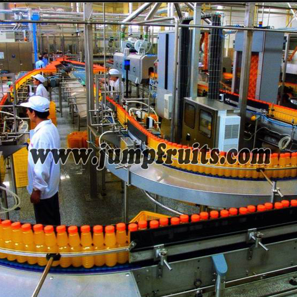factory Outlets for 2l-220l Aseptic Bag In Drum Tomato Sauce Equipment - Navel orange, citrus, grapefruit, lemon processing machine and production line – JUMP