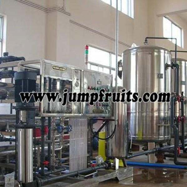 Factory Cheap Mulberry Juice Equipment - Pure water prodution machine – JUMP