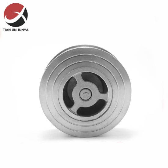 Investment Casting Stainless Steel Wafer Clamped Check Valve for Valve Series