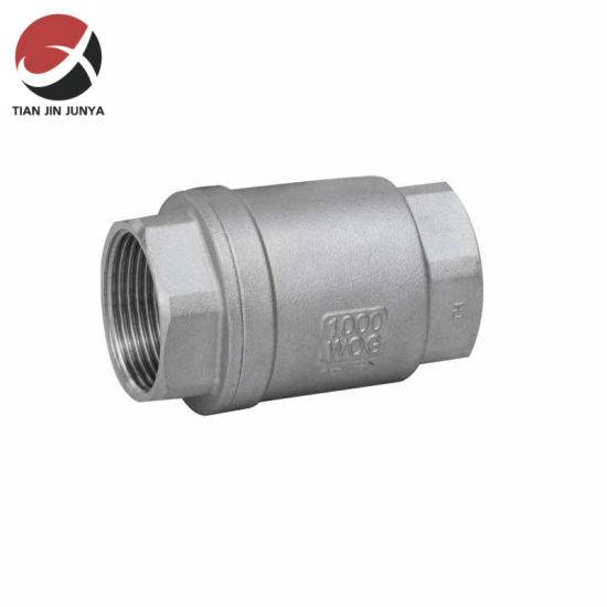 Stainless Steel 2PC Spring Check Valve