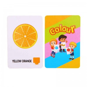 Wild Animals Flash Cards - custom printed baby kids children english flash cards printing services – Knowledge Printing