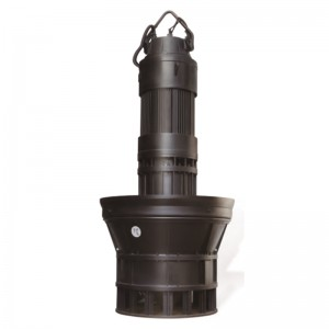Manufacturer of End Suction Vertical Inline Pump - ZQ(HQ) Series Submersible Axial Flow Pump, Mixed Flow Pump  – KAIQUAN