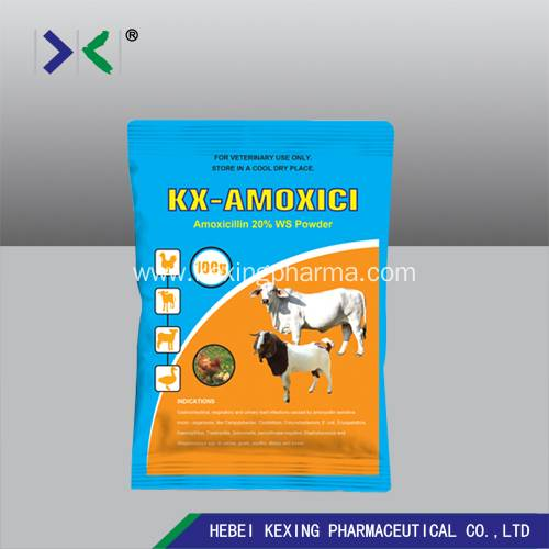 2020 High quality Animal Tylosin 10% Factory - Animal Amoxicillin Water Solution Powder – Kexing