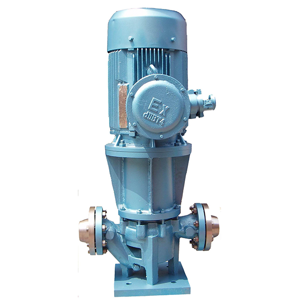 Wholesale Price China Sump Pump Installation Contractors - MG Magnetic Driven Pump – damei kingmech pump