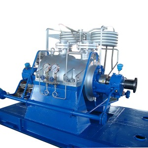 China Cheap price API610 VS Petro-chemical Pump - API610 BB5(DRM)Pump – damei kingmech pump