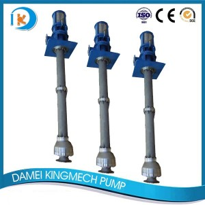 Good User Reputation for 1 Horsepower Sump Pump - API610 VS1 Pump   VTD Model – damei kingmech pump