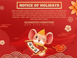 2020 Chinese New Year Holiday (Spring Festival)