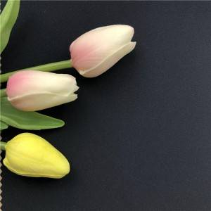 Best quality Softshell Flowers Fabric - KWS19MSP003-3LMT – Kuanyang