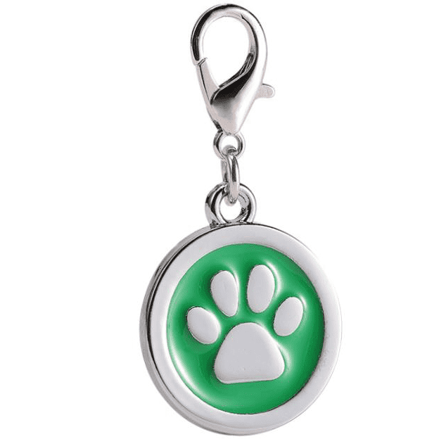 Dog Tag Keychain