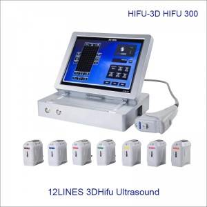 High Intensity Focused Ultrasound 3D4D Hifu Skin Care Health Body Slimming Hifu Beauty Equipment300