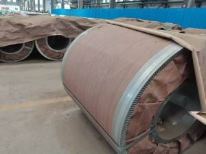 Alloyed galvanized steel sheet